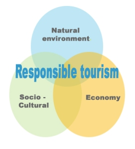 tourism is defined as