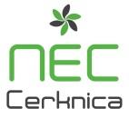 Logo NEC_JPG