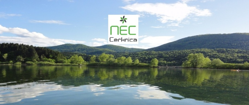 Cover picture NEC